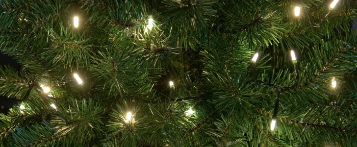 Welke Kerstboom Kopen Brico