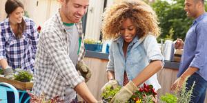 Jardinage pour les nuls : plantes et jardins