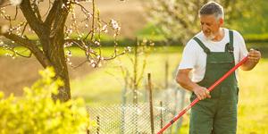 Tuin onderhouden en terras reinigen in 4 stappen