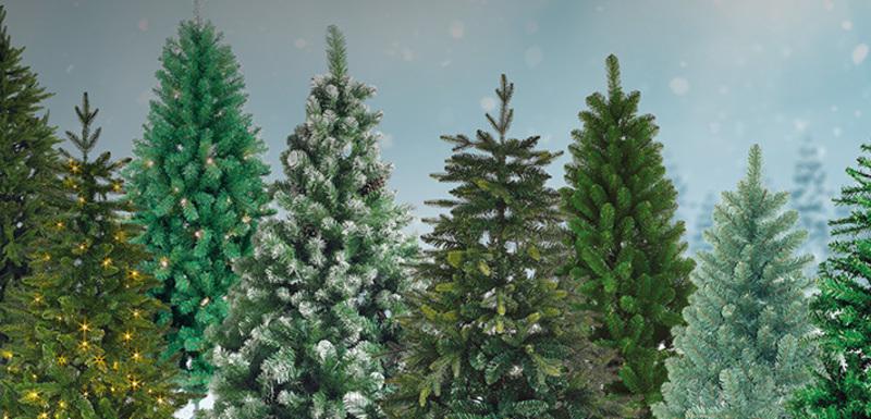 Een kerstboom kopen