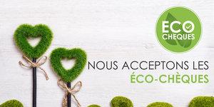 Payer avec éco-chèques