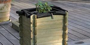 Plantez et récoltez vos pommes de terre dans un bac