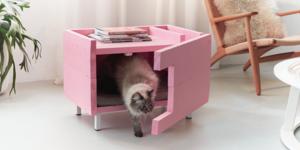 Créez une maison pour votre chat