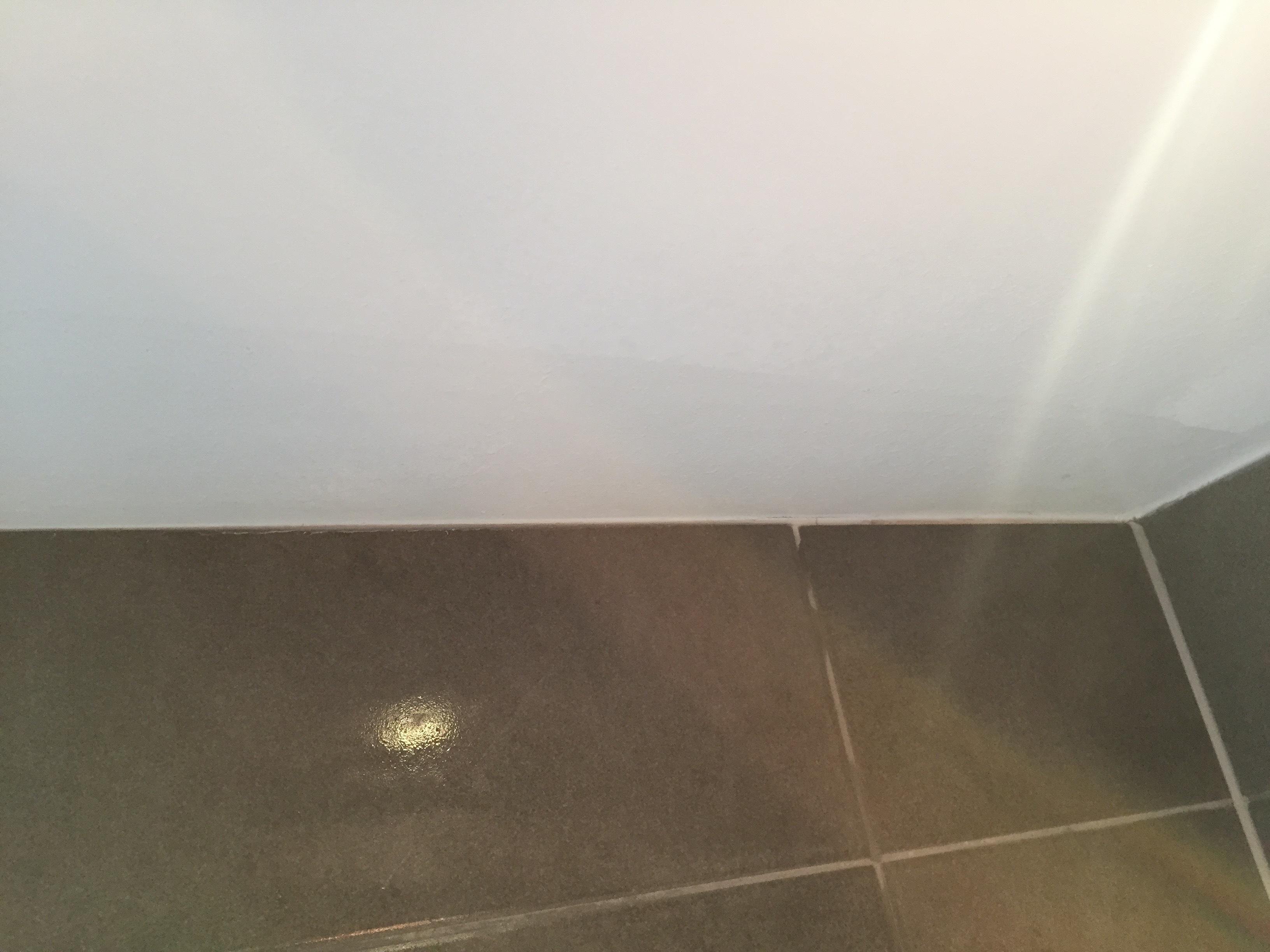 Badkamer Schimmel Verwijderen : Schimmel verwijderen brico voor de makers